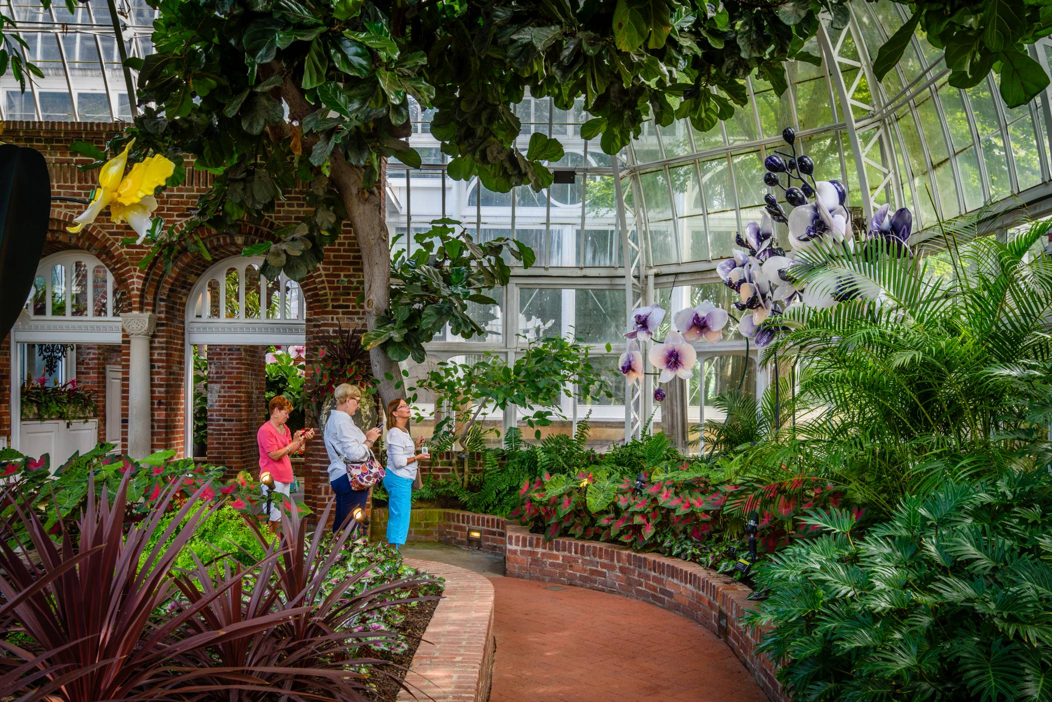 Phipps conservatory and botanical gardens horticulture givegab a key element of phipps mission is to inspire and educate all with the beauty and importance of plants and it all starts with gorgeous mightylinksfo